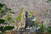 Rock Among Taiga