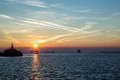 Tanker In The Bay Of Trieste