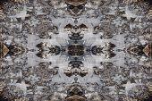 Winter Ice Kaleidoscope Pattern