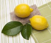 Natural Lemon Clean