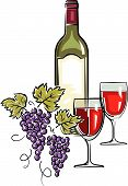 Bottle of wine vector illustration