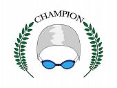 Swimming Champion 2