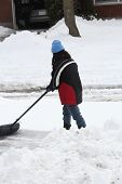 Lady Shoveling Snow from Driveway