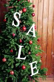 Sale on Christmas tree close-up