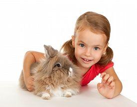 foto of dwarf rabbit  - Child with a rabbit - JPG
