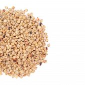 stock photo of sorghum  - pile of sorghum isolated on white background - JPG