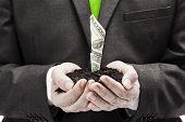 stock photo of one hundred dollar bill  - One hundred dollar bill growing in businessman hands - JPG