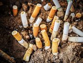 stock photo of butts  - Close up cigarettes butt in ashtray - JPG