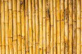 stock photo of bamboo  - Close up bamboo wall  - JPG