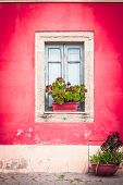 foto of planters  - Closed window with planter and red wall - JPG