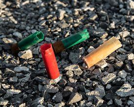 foto of shotgun  - Several different colored shotgun shells resting in gravel - JPG
