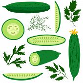 Постер, плакат: Cucumbers