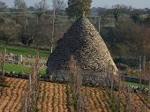 Workmas Trullo Hut
