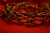 stock photo of humility  - crown of thorns against red background symbolic the day he wore our crown - JPG
