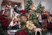 Nativity 05 Msp