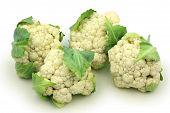 Whole Cauliflower isolated on white background