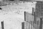 Sand Dunes Fence 1