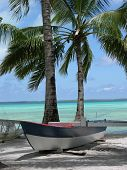 tropical island longboat