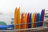 Kayak Rental Business