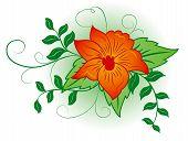 Fundo flor, elementos de Design, ilustração