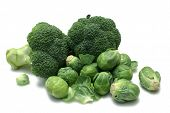 Broccoli And Brussels Sprouts