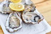 Tasty Fresh Oysters With Sliced Juicy Lemon On Plate. Aphrodisia poster