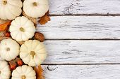 Autumn Side Border Of White Pumpkins And Brown Leaves Over A Rustic White Wood Background poster