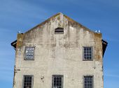 Four Western Gulls Birds Hangout On Top Of Old Building