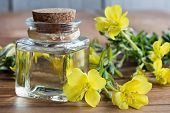 A Bottle Of Evening Primrose Oil With Evening Primrose Flowers poster