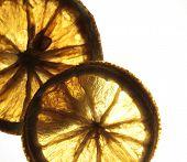 Dry Lemons
