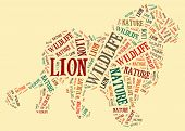 Wordcloud of leon