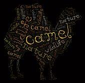 Wordcloud of camel
