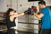 Boxer Training With Her Coach poster