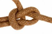 Bowline Knot On Cord