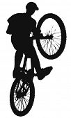 Xstream cyclist vector