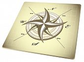 compass rose - vector