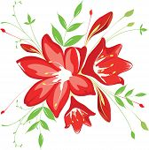 stock photo of belladonna  - bouquet of red flowers and greenery - JPG