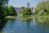 Buckingham Palace And St James Park