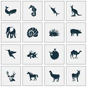 Fauna Icons Set With Hogfish, Porcupine, Swordfish And Other Joey Elements. Isolated  Illustration F poster