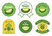 Thai Durian Stickers Design Set With Organic Guarantee,thai Tender,best Quality ,fresh From Farm And poster