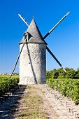 windmill with vineyard near Blaignan, Bordeaux Region, France