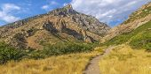 Hiking Trail In The Wilderness Of Provo Utah poster