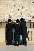JERUSALEM - FEBRUARY 20: Hasidic Jews at the Kotel (Western Wall) February 20, 2012 in Jerusalem, IL