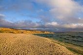 Sandy Beach In Autumn