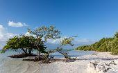 Florida Keys Anne's Beach