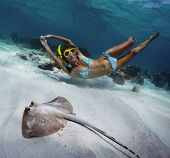 Underwater shoot of a woman swimming over sandy sea bottom with spotted ray on the foreground