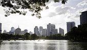 Lumpini Park, Bangkok, Thailand.