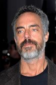 LOS ANGELES - DEC 6:  Titus Welliver arrives at the 'Promised Land' Premiere at Directors Guild of A