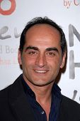 LOS ANGELES - DEC 12:  Navid Negahban arrives to the NOH8 4th Anniversary Party at Avalon on Decembe