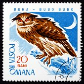 Postage stamp Romania 1967 Eagle Owl, Bird of Prey